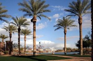 Rancho El Dorado - Maricopa