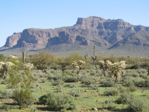 Majestic views of the Superstition mountain make living in Apache Junction even more sweet.